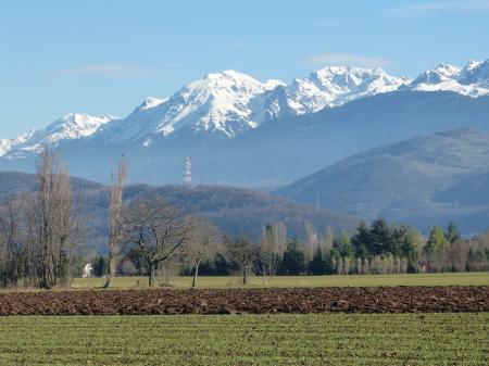 Balade hivernale dans Reymure